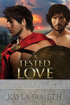 Cover of A Tested Love